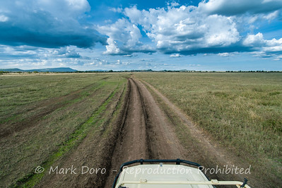 Storm clouds over the savannah plains, Serengeti, Tanzania