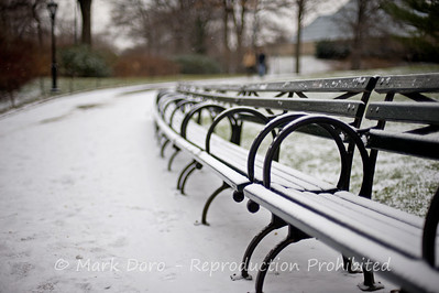 Snowy bench, Central Park, New York