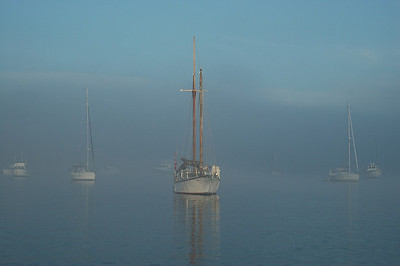 Morning mist in Echo Bay, Sucia Island