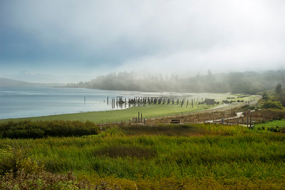 Anacortes ferry terminal on a fall morning