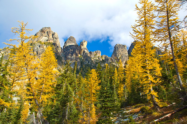 Larch and Liberty Bell, North Cascades