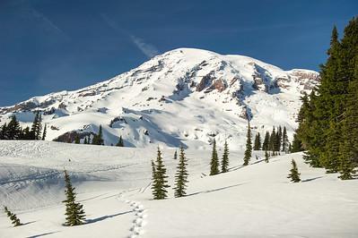 Snowshoe abve Paradise