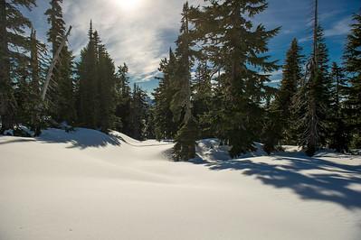Paradise, Vista Trail Area