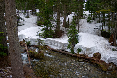 Upper Denny Creek Basin