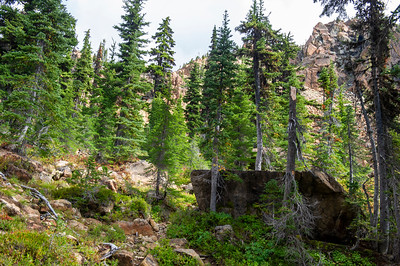 Trail near the pass