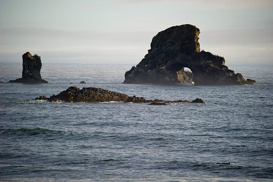 Sea Lion Arch Rock