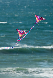 Kites Above the Waves