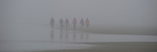 Beach Combers in  Summer Fog