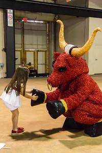 No Bull Public Relations