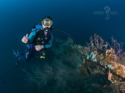 Sylvie sur l'épave du Roraima, à -45m