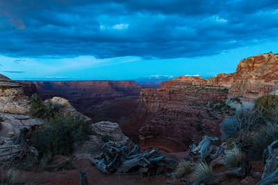 Shafer Canyon by moonlight; Canyonlands National Park