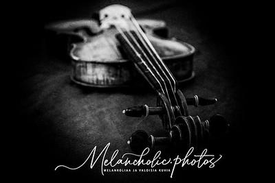 The Violin V