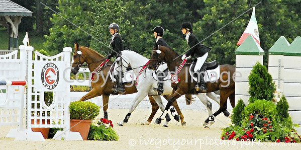 Theme:  Silver<br /> 2013 NAJYRC 1-star Silver Medal Eventing Team