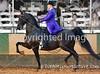 Theme: Colorful<br /> A rider with a very colorful coat!<br /> Lexington Jr. League, 2017