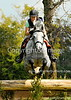 Theme: Gray<br /> Kentucky Horse Park, 2012