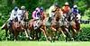 Theme:  Colorful<br /> Colorful Jockey Silks<br /> High Hope Steeplechase, KY Horse Park<br /> Lexington, KY 2017