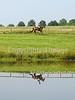 Theme:  SYMMETRY<br /> 42 FDL Lands End Farm MT<br /> September 2013