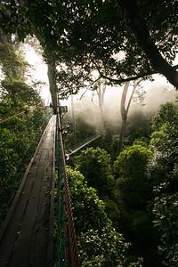Danum Valley, Sabah, Malaysia