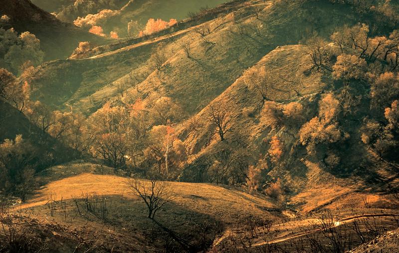 Hillsides, December 4