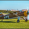 """GULLWING STINSON"""
