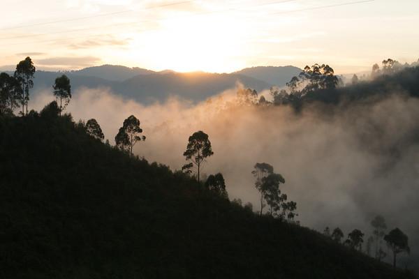 Mountain Mist II