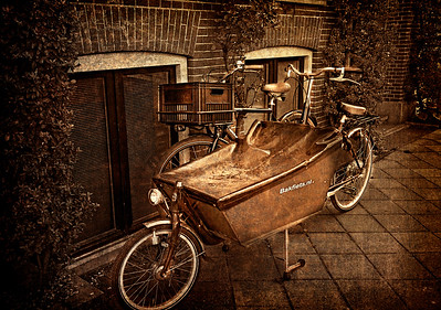 { metallic bikes }