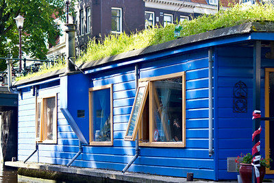 A house on the canal with grass growing on top!