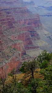 Grand Canyon Landscape V