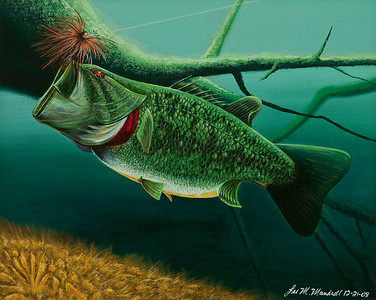 Jiggin' Acrylic - Canvas *This is actually a curent redo of the first fish painting I had ever done, to see how much better I could do!