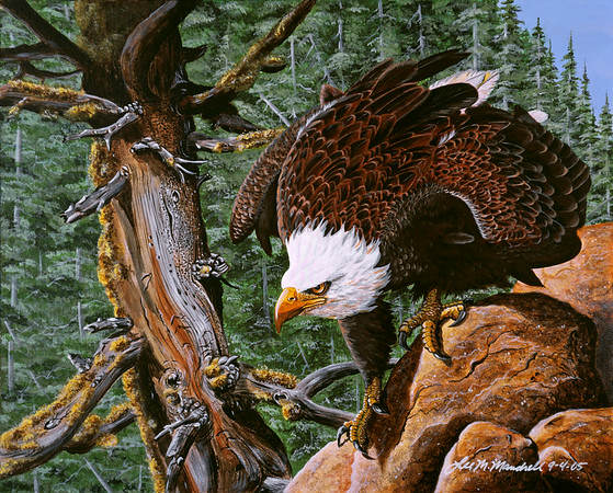 American Eagle<br /> Acrylic - Masonite