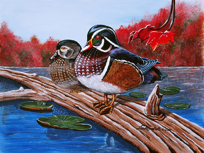 Wood Ducks Acrylic - Masonite