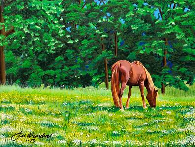 Cades Cove Horse Canvas - Acrylics 12x16