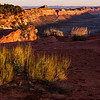 Comb Ridge sunset, Bears Ears National Monument and environs, San Juan County, Utah
