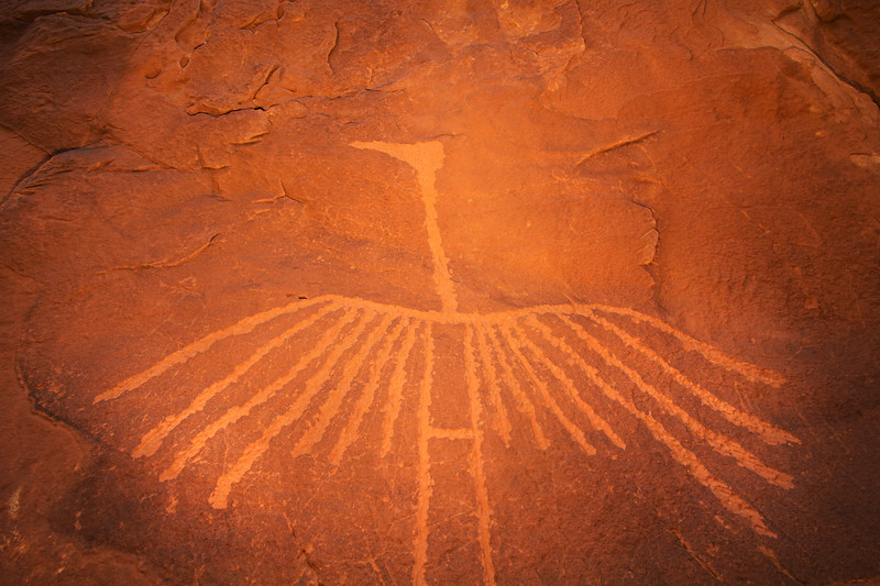 Basketmaker crane petroglyph , Bears Ears National Monument and environs, San Juan County, Utah