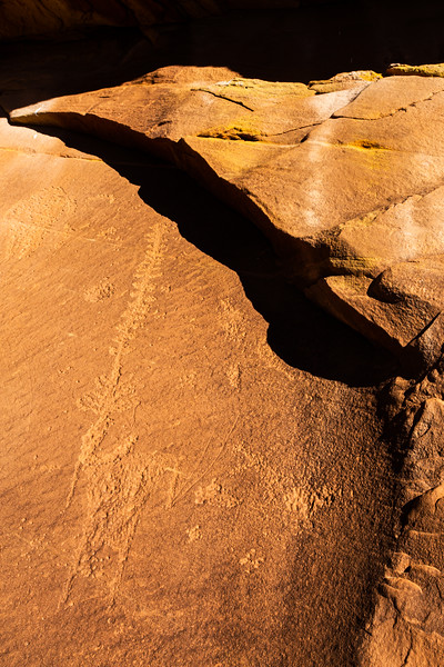 Basketmaker petroglyph depicting an anthropomorph and yucca plant,  Bears Ears National Monument and environs, San Juan County, Utah