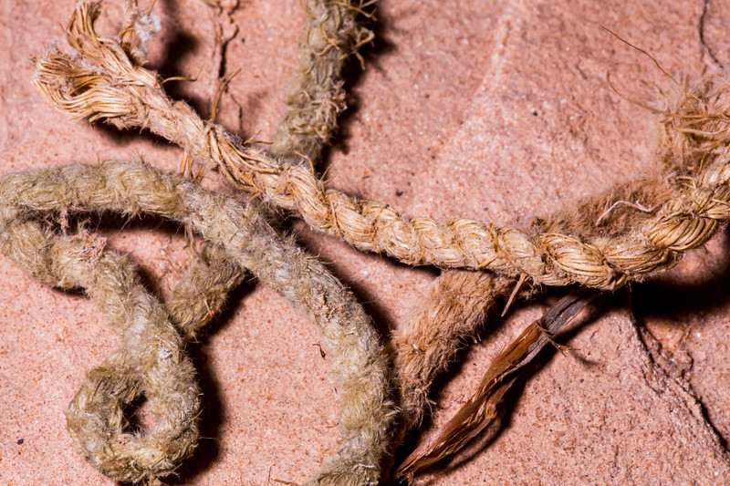Yucca cordage, Bears Ears National Monument and environs, San Juan County, Utah