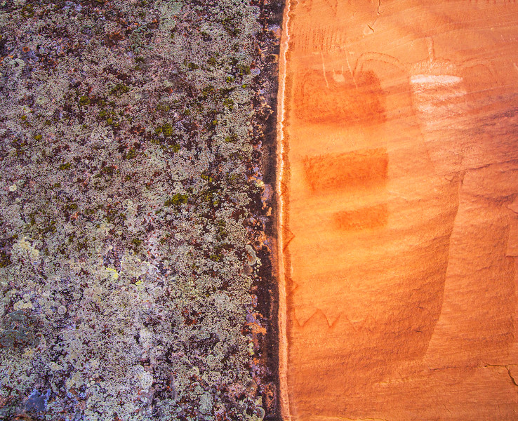 La Sal Basketmaker pictographs with lichen , Bears Ears National Monument and environs, San Juan County, Utah