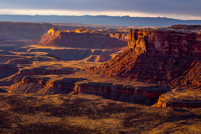 Canyon landscape looking toward Bears Ears at sunset, San Juan County, Utah