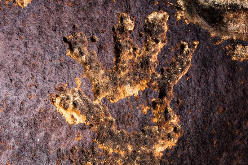 Hand petroglyph, Fremont-Pueblo, Bears Ears National Monument, San Juan County, Utah