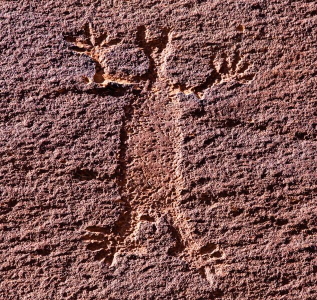 Closeup of deeply carved Basketmaker anthropomorph, Bears Ears National Monument and environs, San Juan County, Utah