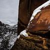 Bear petroglyph, La Sal Basketmaker, Bears Ears National Monument, San Juan County, Utah