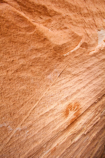 Ancestral Pueblo pictographs , Bears Ears National Monument and environs, San Juan County, Utah