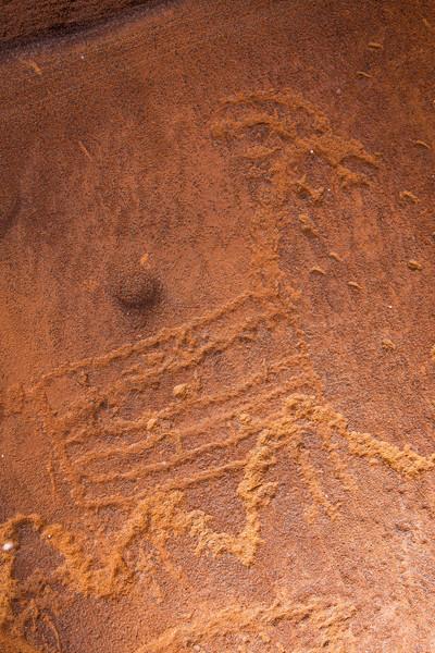 Linear petroglyphs, Bears Ears National Monument, San Juan County, Utah