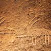 Ancestral Puebloan petroglyphs, Bears Ears National Monument and environs, San Juan County, Utah