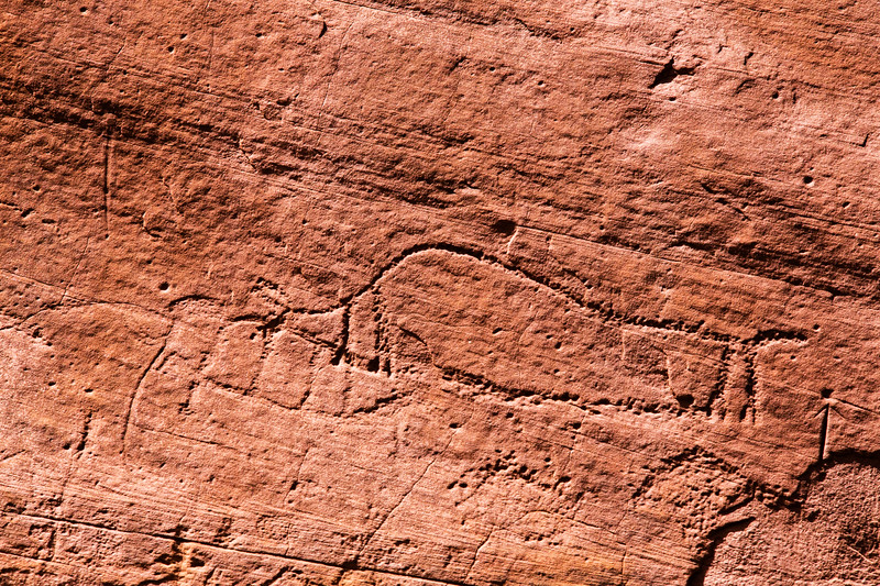 Possible Columbian mammoth and Bison antiquus petroglyphs, Bears Ears National Monument and environs, San Juan County, Utah