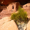 Moonhouse, Ancestral Pueblo structures, Bears Ears National Monument, San Juan County, Utah