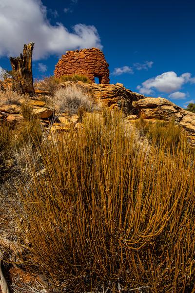 Mule Canyon tower structure, late Pueblo III, Bears Ears National Monument, San Juan County, Utah