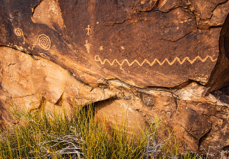 Snakes and Mormon Tea, Ancestral Pueblo petroglyphs, , Bears Ears National Monument and environs, San Juan County, Utah