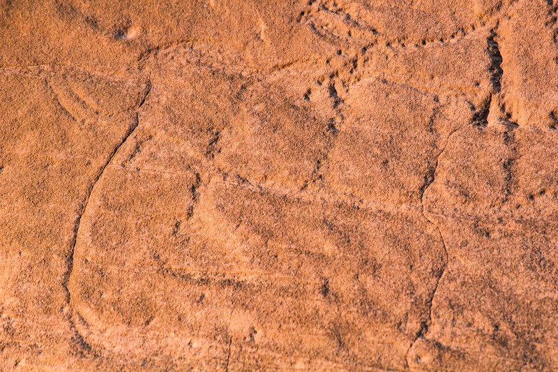 Closeup of possible Columbian mammoth and Bison antiquus petroglyphs, Bears Ears National Monument and environs, San Juan County, Utah