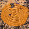 Mud glyph, Ancestral Pueblo design on structure wall , Bears Ears National Monument and environs, San Juan County, Utah